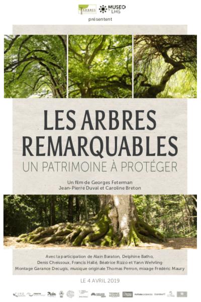 Film offert : Les arbres remarquables